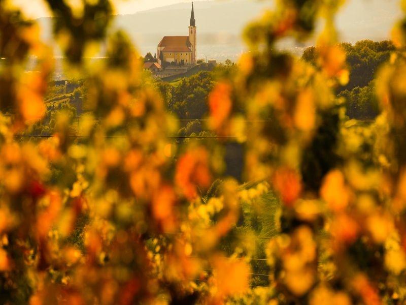 Maribor, www.slovenia.info, foto: Domen Groegl