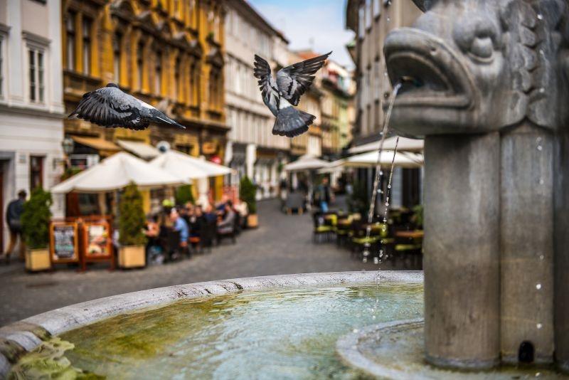 Ljubljana, www.slovenia.info, foto: Nikola Jurišič