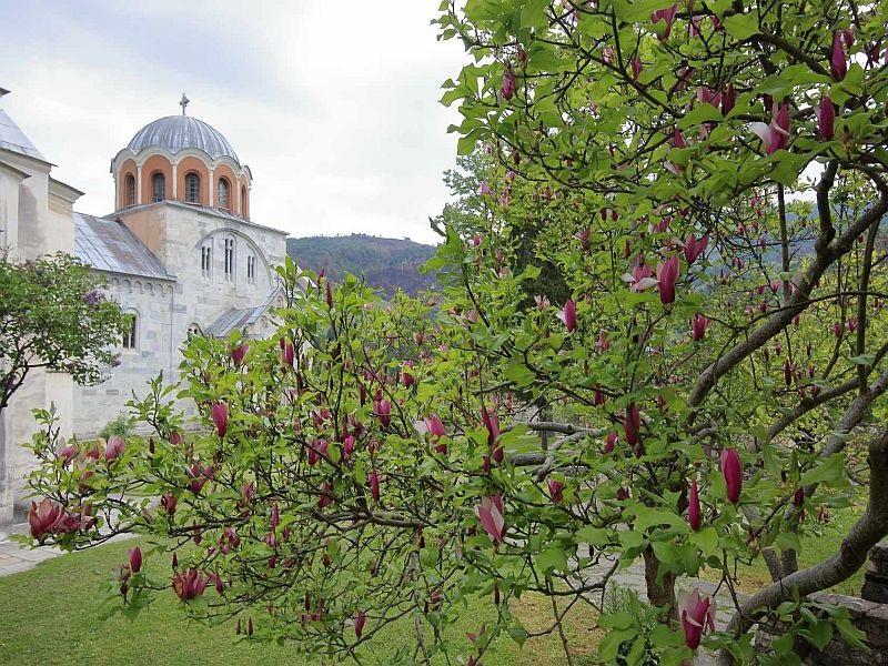 Wandern   serbien 1 1