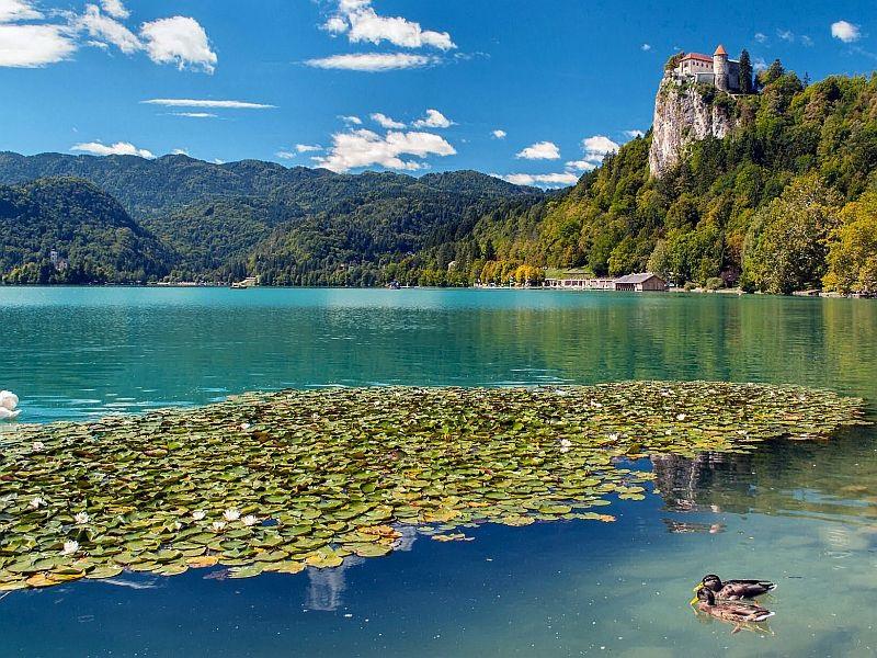 Bled – im Herzen der Alpen